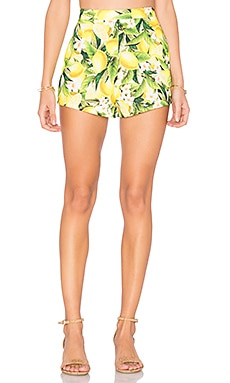 Martine Short in Citrus Stretch