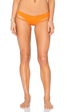 Zuma Bikini Bottom