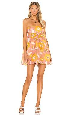 Cupcake Dress Selkie $210