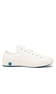 Shoes Like Pottery Low Top Canvas in Pure White