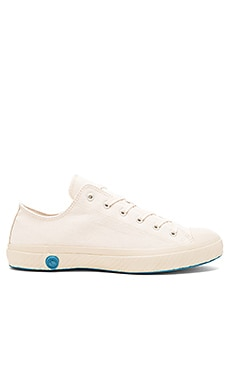 SNEAKERS BASSES TOILE CANVAS LOW TOP CANVAS