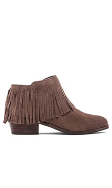 Steve Madden Patzee Bootie in Taupe Suede