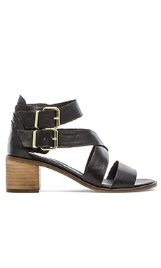 Steve Madden Rosanna Sandal in Black Leather