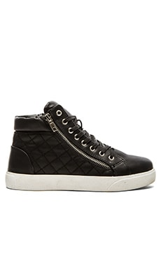 Steve Madden Decaf Hi-Top Sneaker in Black