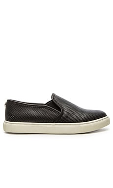 Steve Madden Ezeke Slip On Sneaker in Black