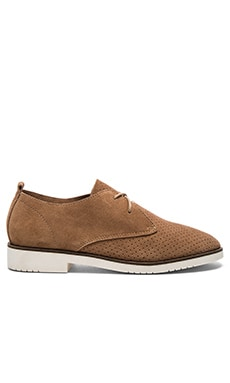 Tripit Oxford in Cognac Suede