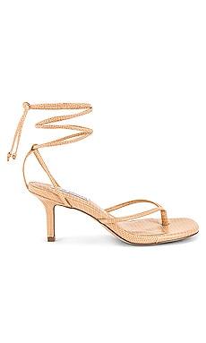 Lori Kitten Heel Sandal Steve Madden $82