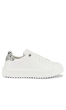Catcher Sneaker Steve Madden $70