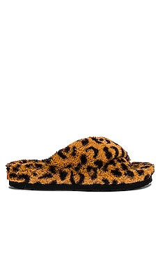 Fuzed Slipper Steve Madden $40