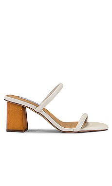 Honey Sandal Steve Madden $80