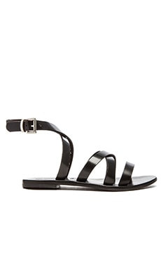 Sol Sana Minx Sandal in Black