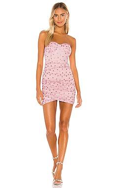 Fifi Mesh Mini Dress superdown $68
