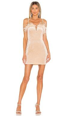 ERIKA ドレス superdown $66