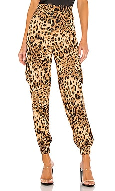 Alisha Cargo Pant superdown $49
