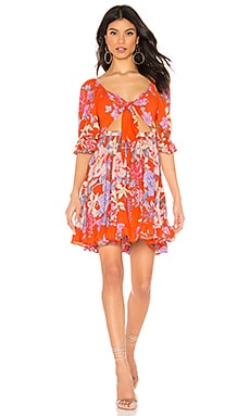 Lily Playdress Spell & The Gypsy Collective $52