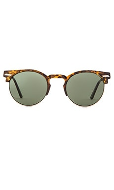 Spitfire Chill Wave in Tortoise & Black