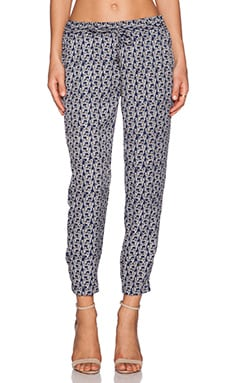 Splendid Zebra Print Pant in Navy