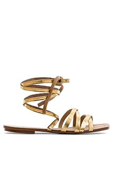 Splendid Tayler Sandal in Gold