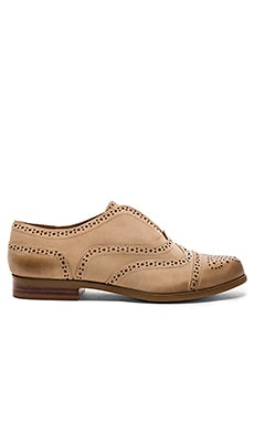 Tobey Oxford en Nut