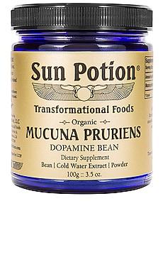 The Dopamine Bean Mucuna Pruriens Organic Bean Extract Powder Sun Potion $47 BEST SELLER