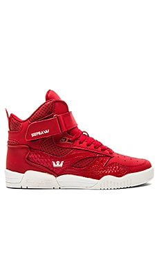 Supra Bleeker in Cardinal