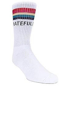 Rainbow Sock Spiritual Gangster $24