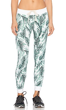 Spiritual Gangster Muse Sweatpant in Palm & Stardust