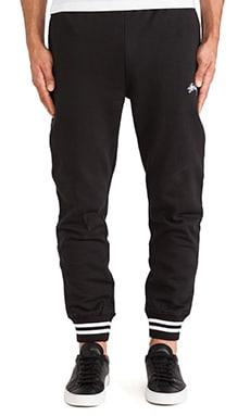 Stussy Cuff Sweatpant in Black