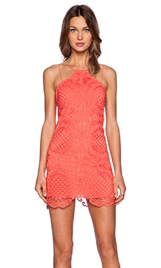 Style Stalker Hong Kong Shift Dress in Coral