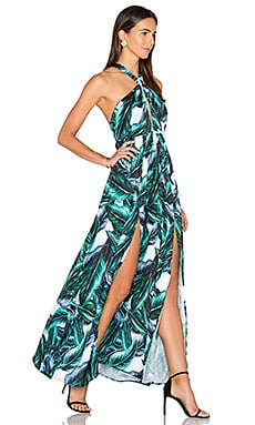 Sierra Maxi Dress in Sierra Print
