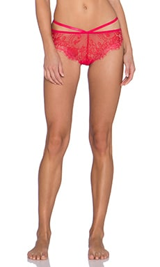 Style Stalker Safia Brief in Rose