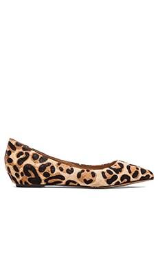 Steven Garnur Flat in Leopard