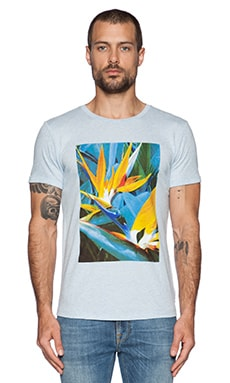 Scotch & Soda Shortsleeve Botanica Tee in Blue