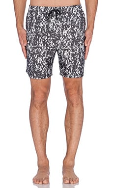 Stampd Calf Hair Print Trunks in Black