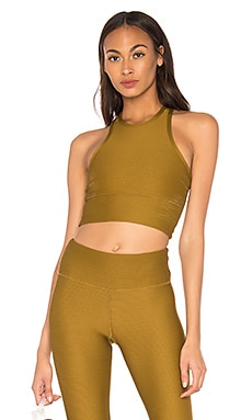 Bowie Crop Top STRUT-THIS $35