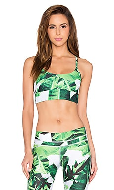 Stone Fox Sweat Gaia Crop Bra in Banana Leaf