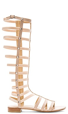 Gladiator Sandal in Adobe