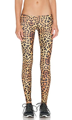 Teeki Gold Awakening Hot Pant in Leopard