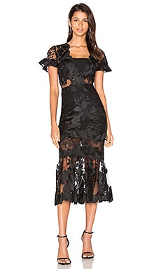 Three Floor Floral Feeling Dress in Black
