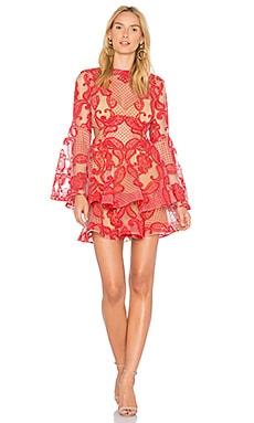 PAISLEY PASSION ドレス