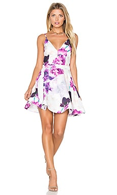 tiger Mist Eva Skater Dress in Iris Lovers Print