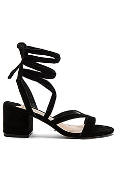 Amor Heel in Black Kid Suede