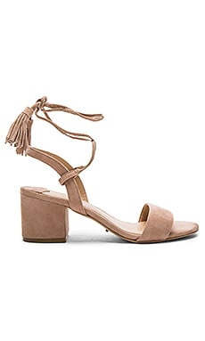 Ash Heel in Blush Kid Suede