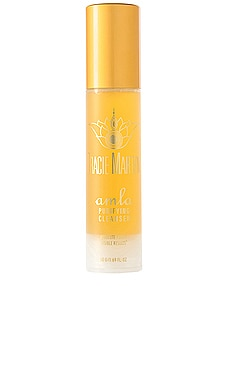 Amla Purifying Cleanser Tracie Martyn $65 BEST SELLER