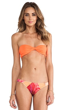 Tyler Rose Swimwear
