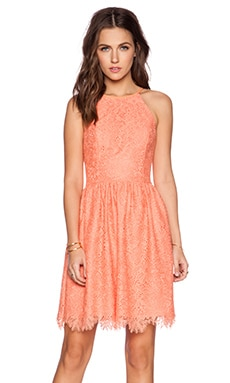 Trina Turk Joanne Dress in Papaya