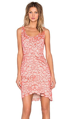 Trina Turk Kruze Mini Dress in Nude & Pink