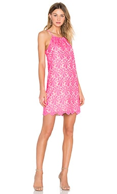 Lil Penny Dress en Flamingo