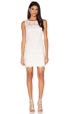Bisitti Dress in Whitewash