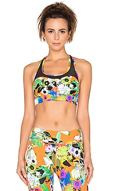 Trina Turk Pop Floral Mesh Back Sports Bra in Multi